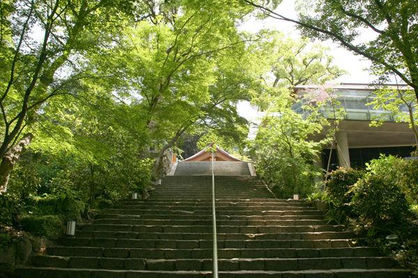 石段から見える拝殿